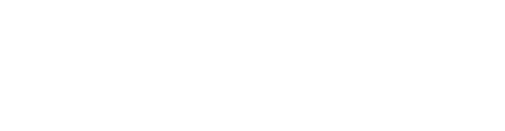 Cavixo technology process